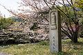 Shojiji Kyoto Japan16bs3s4592.jpg