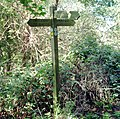 Signpost in the Woods - geograph.org.uk - 296794.jpg