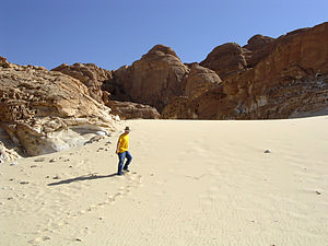 English: Sand dune on the Sinai Peninsula.