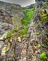 Skellig Michael rock face.jpg