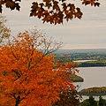 Skyline View in Autumn.jpg