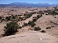 Slickrock - panoramio.jpg