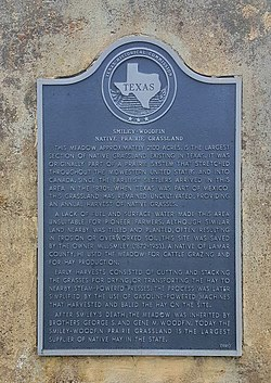 Photo of Black plaque number 20446