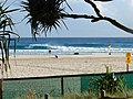 Snapper Rocks - panoramio.jpg