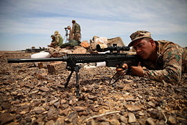 Snipers conduct live-fire exercise during Exercise Eager Lion 150507-M-QZ288-047.jpg