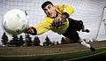 Soccer goalkeeper.jpg