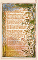 Songs of Innocence and of Experience, copy AA, 1826 (The Fitzwilliam Museum) object 27 On Anothers Sorrow.jpg