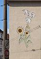 Sonnenblumen, Tauben am Wohnhaus Heidemannstraße 81a, Köln-Neuehrenfeld-6951.jpg