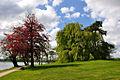 Sorø - parkland.jpg