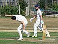 Southwater CC v. Chichester Priory Park CC at Southwater, West Sussex, England 034.jpg