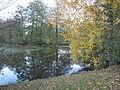 Starý Smolivec, rybník II.jpg