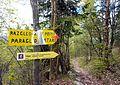 Stara Fužina - trail 6.jpg