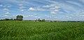 Steenvoorde sur le GR128 (3).jpg