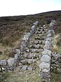 Steps from the A939 lay-by - geograph.org.uk - 1052502.jpg