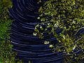 Sternenhimmel P4214798PS.jpg