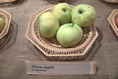 Stinas äpple.jpg