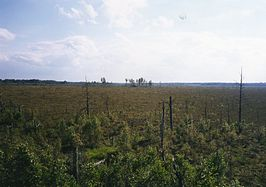 Store Mosse nationalpark.jpg