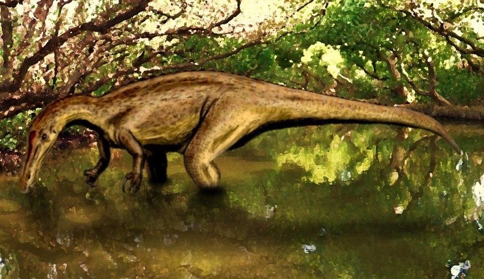 Suchomimus BW
