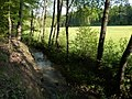 Sulzbach bei Steinenbronn - geo.hlipp.de - 10647.jpg