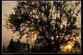 Sunset (16288979232).jpg