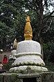 Swayambhu 2017 1001 11.jpg