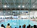 Swimming Competition - The 18th National Para-Sports Festival.jpg
