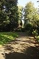 Sydney Gardens Shadows.jpg