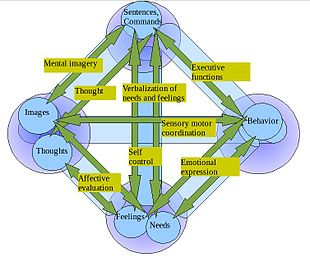 Hypostatic model of personality - Wikipedia