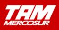 TAMmercosurLogo.png
