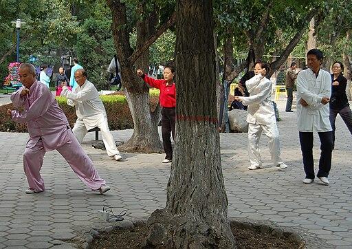 Taijiquan-Lanzhou