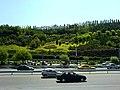 Tehran ( Summer Time ) - panoramio - Behrooz Rezvani (3).jpg