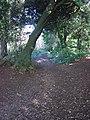 Teignmouth Road - pre 1848 - geograph.org.uk - 1082496.jpg