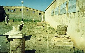 Cartennas - Ruins of Roman Cartennas