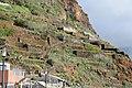 Terrassengärten am südöstlichen Ortsrand von Jardim do Mar, Madeira.jpg