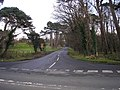 The Back Road to Longniddry - geograph.org.uk - 350467.jpg