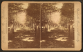 The Hermitage entrance, Nashville, Tenn, by Union View Co..png