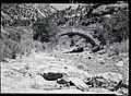 The Pine Creek Bridge. ; ZION Museum and Archives Image 002 01001 ; ZION 9457 (3f7e818e30024c88af8f439e8bfd05c7).jpg