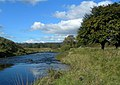 The River Ayr - geograph.org.uk - 569706.jpg