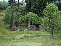 The ruins of Laggan Lodge, Halfmark Forest. - geograph.org.uk - 517032.jpg