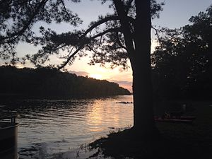 Tims Ford State Park - Image: Tims Ford State Park, Campground view, June 2014