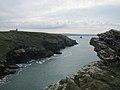 Tintagel Coast, Cornwall (461271) (9456427151).jpg