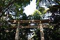 Tokyo - panoramio - AwOiSoAk KaOsIoWa (13).jpg