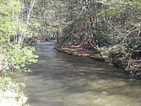 Tomhicken Creek.JPG