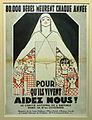 Toulouse - Musée des Instruments de Médecine - Affiche - 20110325 (1).jpg