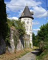 Tour du château fort de la baronnie.jpg