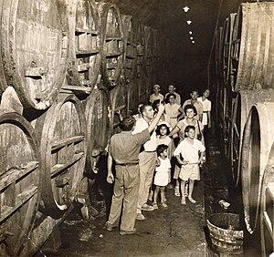 Israeli wine - Zichron Yaakov winery, 1945