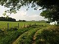 Track near Dornafield - geograph.org.uk - 979557.jpg