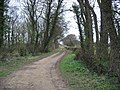 Track towards Potterton - geograph.org.uk - 749009.jpg
