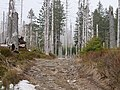 Trail near Sonnenkappe 10.jpg