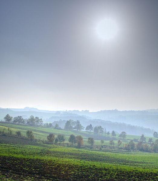 File:Trees - Viano (RE) Italy - October 22, 2012 - panoramio.jpg